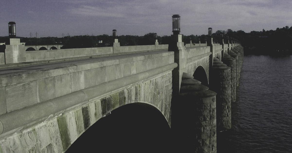 Swallow, My Sunshine: Bridge