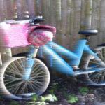 Bike Back