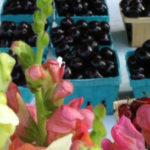 Raspberries, Mushrooms, Garlic, Plums, Peace